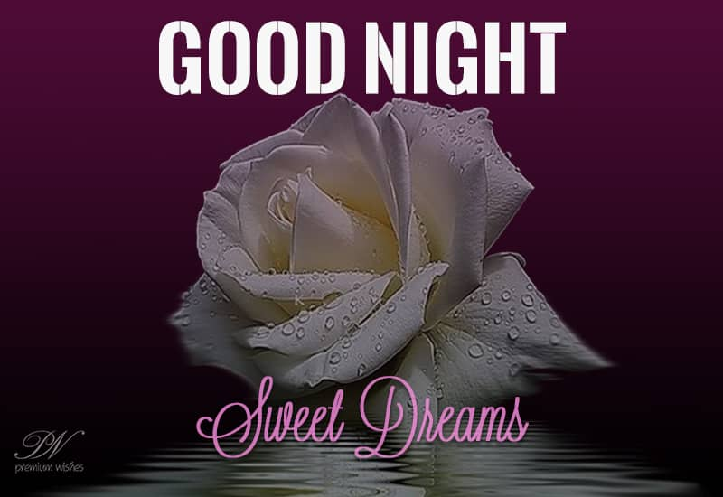 Good Night U2013 Sweet Dreams