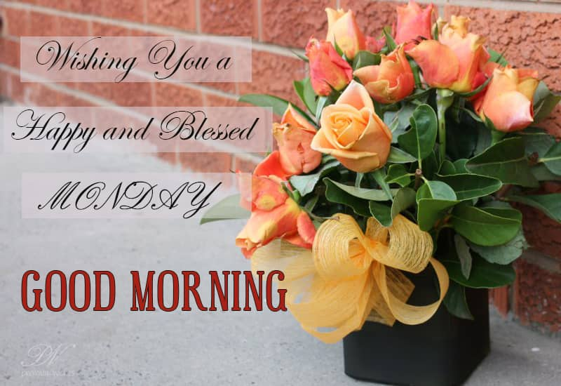 Good Morning Wishes With Roses Premium Wishes