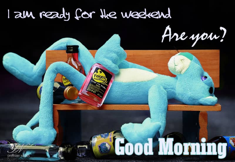 Good Morning Are You Ready For The Weekend Simply Good