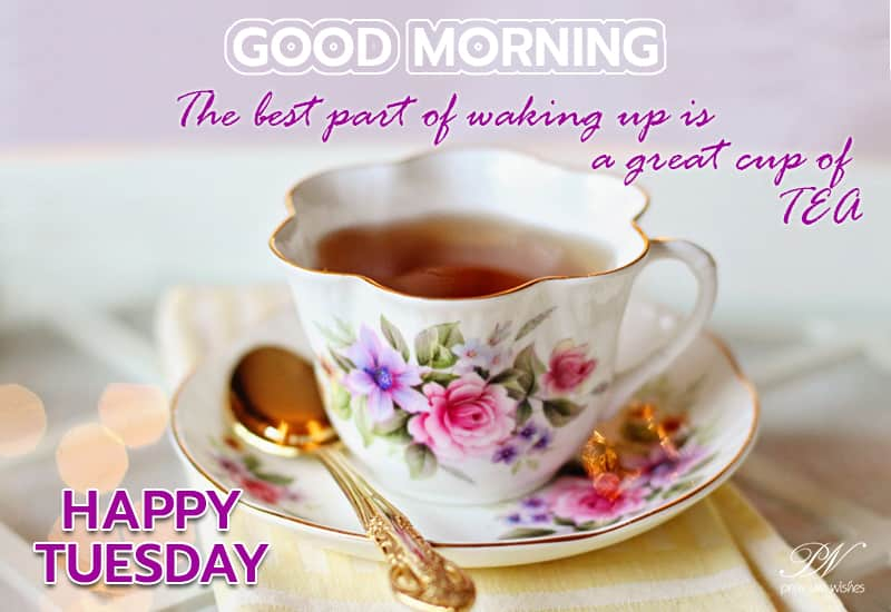 Happy Tuesday Good Morning Tea Tuesday Wishes Premium Wishes