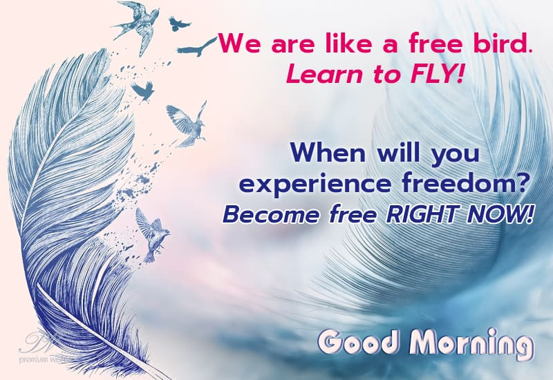 Good Morning Be Free Like A Bird Good Morning Wishes Premium Wishes