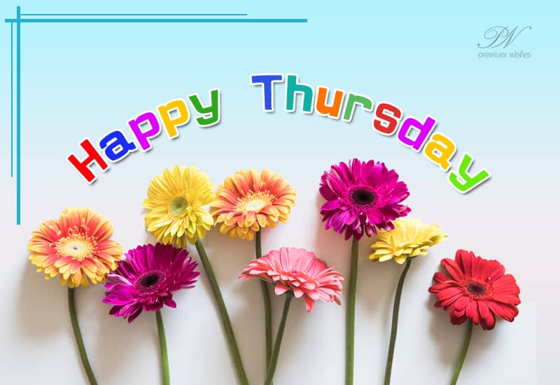 Happy Good Morning Thursday Thursday Wishes Premium Wishes