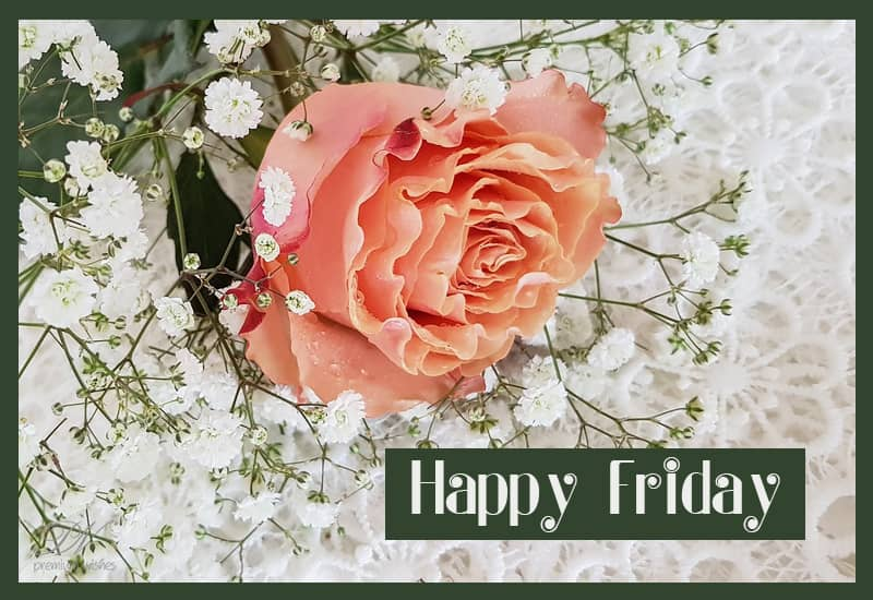 Happy Friday Good Morning Friends Friday Wishes Premium Wishes