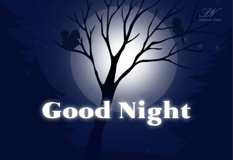 Good Night Rest Peacefully Sweet Dreams Good Night Wishes