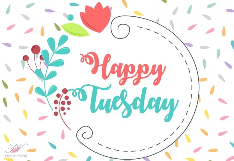 Happy Tuesday Good Morning Enjoy The Day Ahead Tuesday Wishes